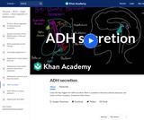 ADH secretion