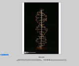 360-degree rotation of a DNA model