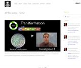 AP Bio Labs - Part 2