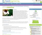 Bees: The Invaluable Master Pollinators