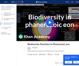 Biodiversity Flourishes in Phanerozoic Eon